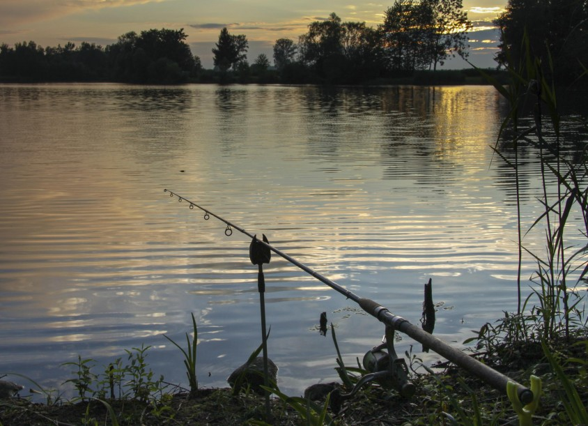 Fishing In Kansas The Dig