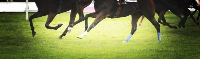 racing horses running to the finish
