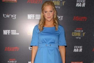 2015 summer movie reviews - amy schumer